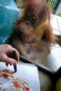 Dewi watching drawing